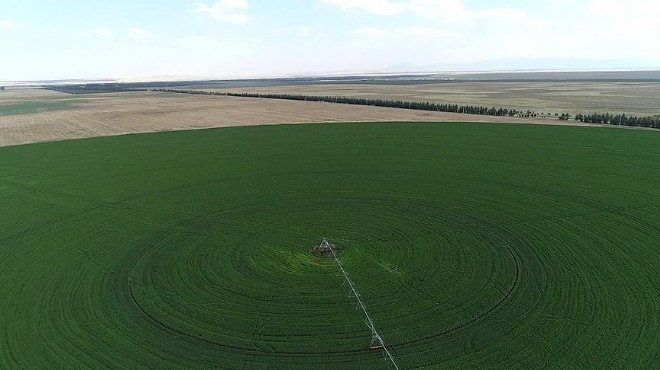 Bakan'dan çiftçiye büyük müjde: Araziler artık...