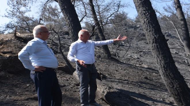 Başkan Karakayalı yangında zarar gören bölgeye gitti