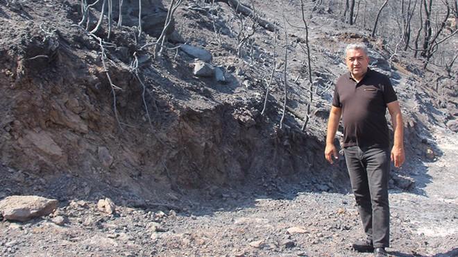 CHP'li Serter'den, Pakdemirli'ye orman yangınları çağrısı