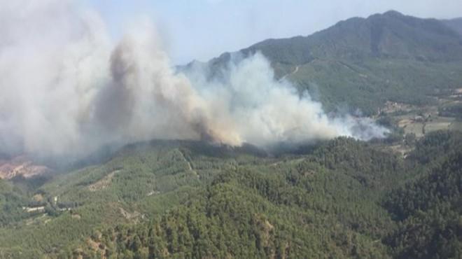 Datça'daki orman yangının sebebi belli oldu: İşte tazminat miktarı
