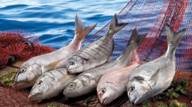 Ege balığına Amerika'da büyük ilgi