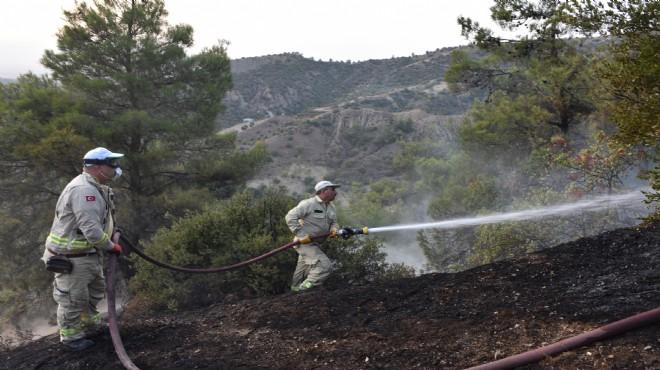 Ege'de korkutan orman yangını