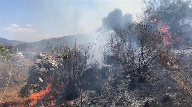 Fethiye'de korkutan orman yangını