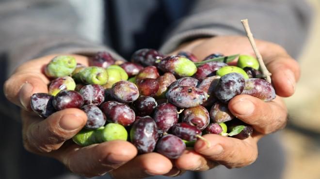 Gaziemir'de hasat mutluluğu