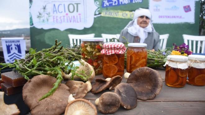 İlk kez Ege'de düzenleniyor: En acı festival