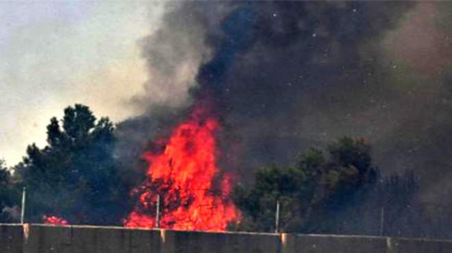 İzmir'de büyük yangın! Otoyol kilitlendi: İşte son durum!