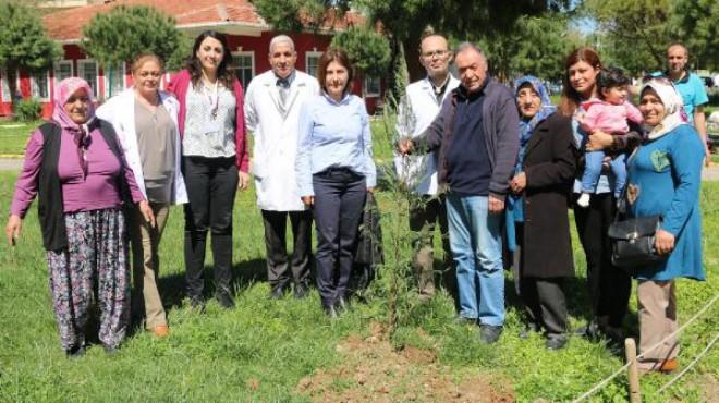 İzmir'de hayata döndüğü hastanenin bahçesine fidan dikti