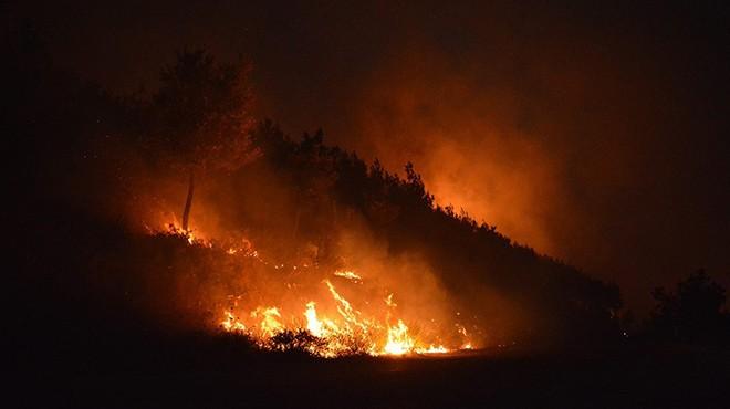 İzmir'de o bölgede yine yangın!