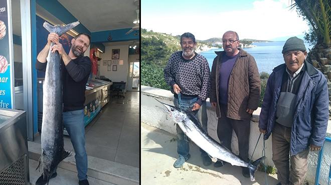 İzmir'de yakalandı... Tam 40 kilo!