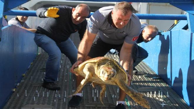 İzmir Körfezi'nde soluk soluğa operasyon... Hayata böyle döndürüldü...
