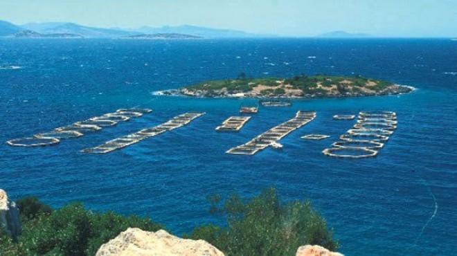 Karaburun'da yeni kriz: Valilik'ten balık çiftliğine vize!
