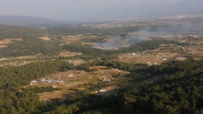 Kemalpaşa'da orman yangını!