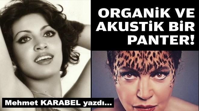 Mehmet KARABEL yazdı... Organik ve akustik bir panter!