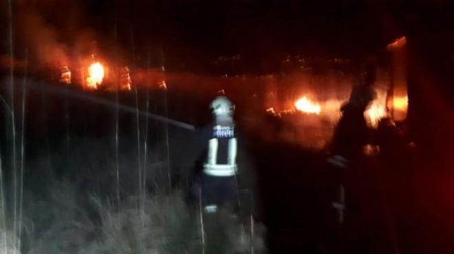 Muğla'da sazlık alanda yangın çıktı!