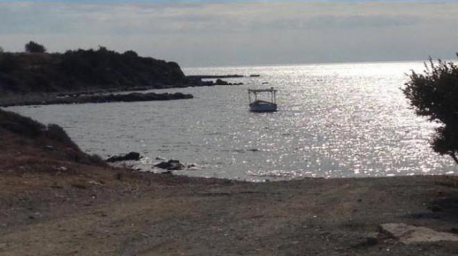 Onay geldi: İzmir'in fok yuvasına balıkçı barınağı!