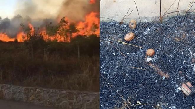Patates közlerken ormanı yaktılar!