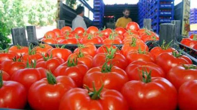 Rusya'dan domates açıklaması: Ambargo kalkmayacak!