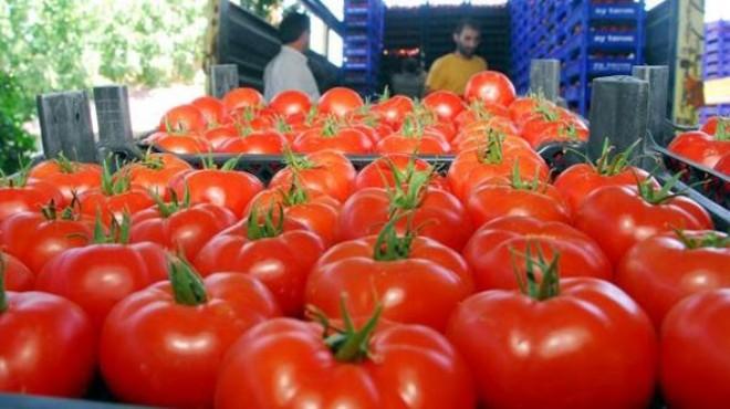 Rusya duyurdu: Türk domatesi için flaş karar!