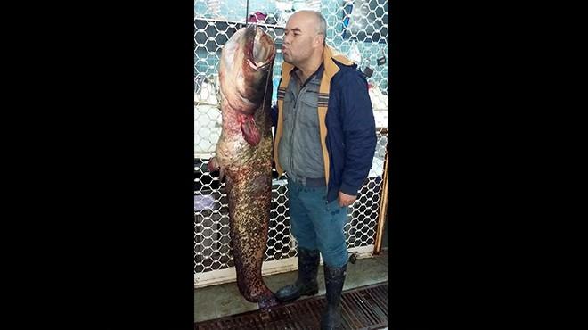 Salihli'de yakalandı: Tam 42 kilo!