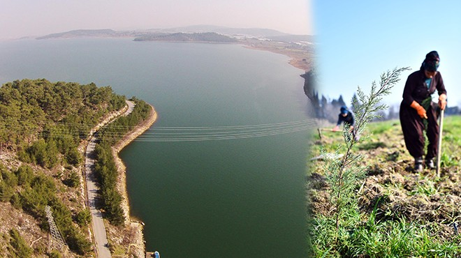 Tahtalı Barajı'nda 'yeşil' seferberlik
