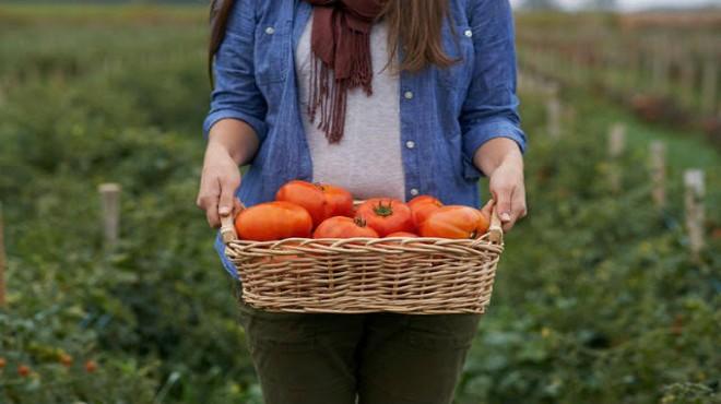 Uzmanlardan 'organik gıda' için kritik uyarı!