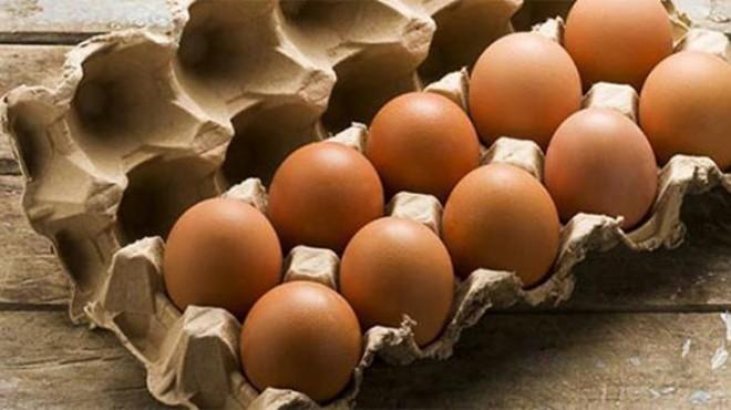 Yumurta skandalı 19 ülkeye sıçradı!